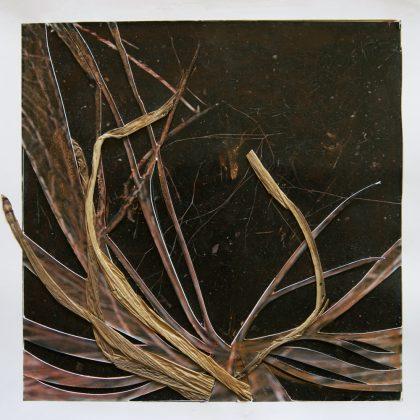 1 - B:W grasses
